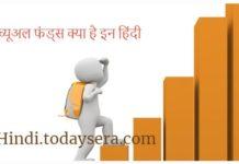 म्यूच्यूअल फंड्स क्या है इन हिंदी