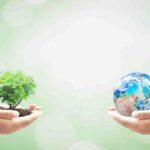 10 Lines on Save Earth in Hindi धरती बचाओपर १० पंक्तियाँ हिंदी मे